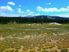 Yosemite John Muir Trail
