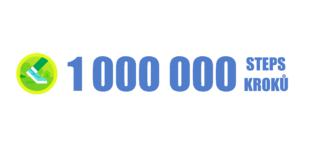 1000000 steps