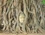 Buddha head in the tree roots Ayutthaya