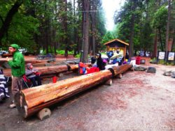 Camp 4 Yosemite waiting line