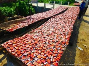 Dry fish Cambodia