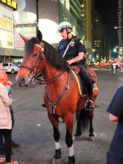 Policeman on Times Square